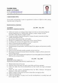 Resume Format For Freshers Accountant Lovely Fresher Accountant ...