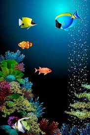 moving fish wallpaper for phones. Perfect Moving Saturday August 4 2012 And Moving Fish Wallpaper For Phones N