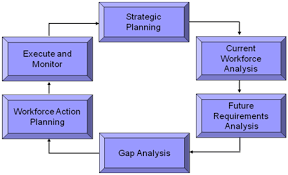 human resources and organizational management > organization strategic workforce planning model