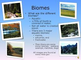 What Are Biomes Biomes Lecture Materials Biomes What Are Biomes Groups