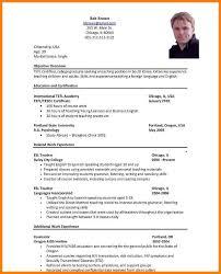 12+ Standard Format Of Cv | Phoenix Officeaz