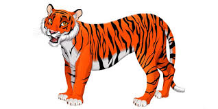 english essay on tiger for students and children class notes  english essay on tiger for students and children