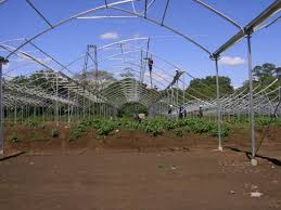 china high strong greenhouse steel