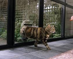dog doors jim s glass glaziers glass