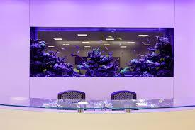 office fish tank. Office Fish Tank F