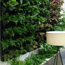 ... living wall planter diy indoor kits water free fulltext treated  greywater reuse for hydroponic green system ...