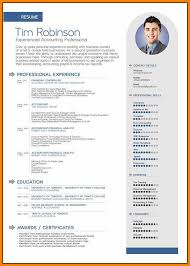 English Cv Model.english Resume 4 1 Cv Structure How To Write The ...