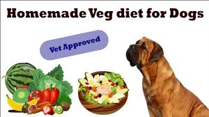 Homemade Veg Diet Plan For Dogs Puppy In Hindi