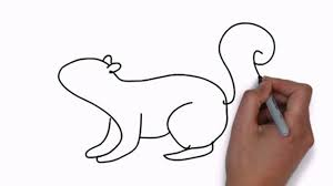 Small Picture How To Draw A Squirrel Video Dailymotion