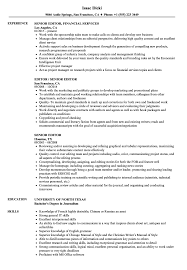 Senior Editor Resume Samples Velvet Jobs