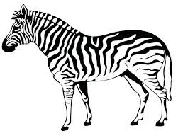 Small Picture marvelous Marvellous Baby Zebra Coloring Pages Crayola Photo Full