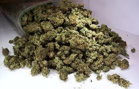 """Результат пошуку зображень за запитом """"Операція «Мігрант»: у Франківську поліція затримала іноземця з марихуаною"""""""