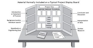 tri fold board size project display rules