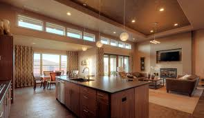 Modern Kitchen Living Room Farmhouse Open Kitchen Living Room Ronikordis
