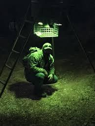 Motion Activated Feeder Light Diy 4 Solar Motion Sensor Green Or Red Feeder Lights