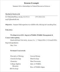 Summer Internship Resume Examples Free 9 Internship Resume Templates In Free Samples