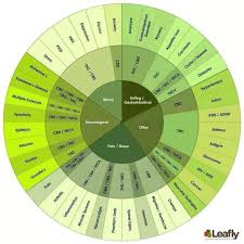 Cbd Decarboxylation Chart Pin On Cannabis Life