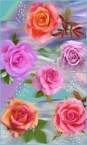 3d Rose Wallpaper ...
