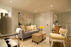 basement apartment design ideas. Hgtv Basement Designs With Nifty Ideas For Apartments Minimalist Apartment Design E