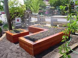 garden beds. kitchen garden raised beds n