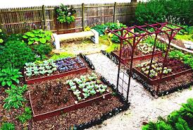 fullsize of splendent beginners backyard design ideas vegetable garden plans beginners backyard design ideas easy verticalgardening
