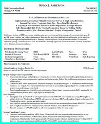 Construction Project Manager Resume Examples It Project Manager