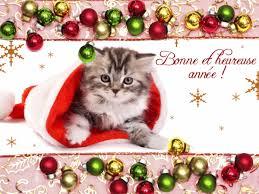 """Résultat de recherche d'images pour """"bonne année chats"""""""