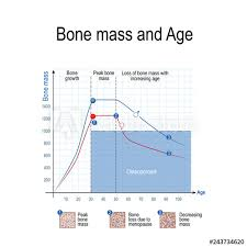 Bone Mass For Male And Female Age And Osteoporosis Chart