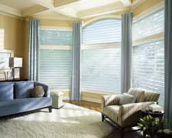 window coverings contemporary living room