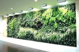 indoor wall garden indoor wall garden indoor wall gardens indoor wall garden ideas indoor vertical wall