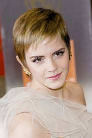 Emma Watson Hair Style coollingwoods celebrity hair emma watsons hair evolution 7966 by wearticles.com
