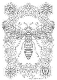 Small Picture Creative Haven Incredible Insect Designs Coloring Book Doodles