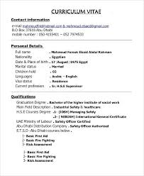 Pastor Resume Examples Youth Minister Resume Samples Worship