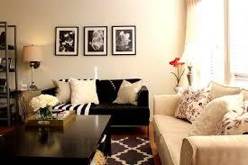 Furniture Ideas Living Rooms Modest Modest  Fresh Sofa Small Property Gallery Cevetacom