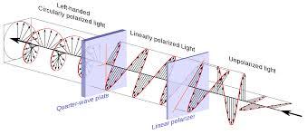 Polarization Of Light Physics Ppt Circularly Polarized Light Firuse Rsd7 Org