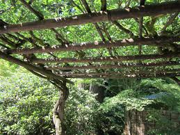 Small Picture The 21 best images about Wysteria Arbor on Pinterest