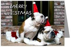 English Bulldog Christmas Cards, Holiday & X-Mas Ornaments
