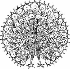 Difficult Coloring Pages For Adults Photo Pic Challenging Coloring