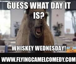 Top 18 Happy Hump Day Memes Minnesota Memes