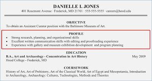 What To Put In Profile For Resume How To Write A Professional
