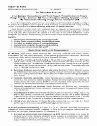 Sample Resume Vice President Business Development Valid Sales