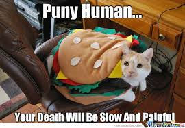 Scary Little Burger Cat... by dadevilslaya9 - Meme Center via Relatably.com