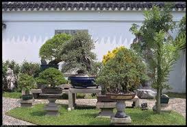 Small Picture The Best Of Chinese Garden Design Ideas Lawn Bonsai Trees
