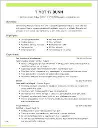 Professional Summary Resume Example Englishor Com