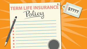 how much does term life insurance cost moneyunder30