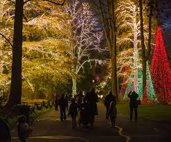 Indianapolis Zoo Lights Prepare To Ooh And Ah Your Indiana Guide To Holiday Light