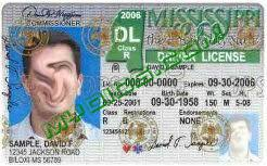 Guide Details Complete Fake Id Mississippi Myoids