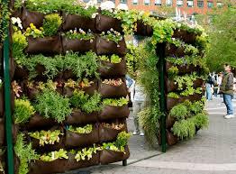 container garden vegetables. 10 Tips For Starting An Edible Container Garden Vegetables I