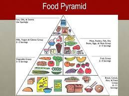 Food Pyramid Project Health Food Pyramid Current Technologies Project T L 445