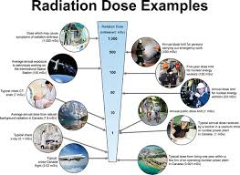 Sievert Dose Chart Just The Facts Radiation Cell Phones Wi Fi And Cancer